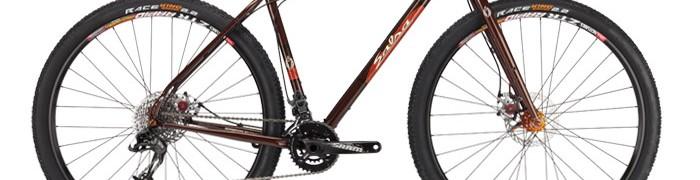 bikes_Fargo2_2013